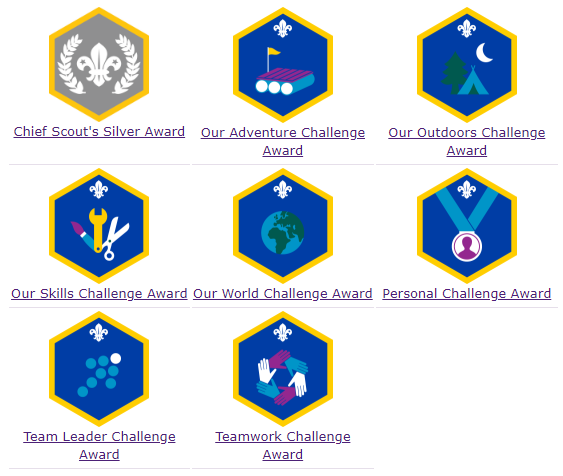 Cubs_challenge_awards.fw